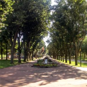 Parc de l'Europe Saint-Etienne