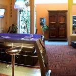 hôtel du midi bar saint-etienne